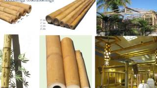 Affordable Tropical Fences-bamboo Fence|a-bamboo Fencing-how To Install-rolled Bamboo Eco~friend-diy