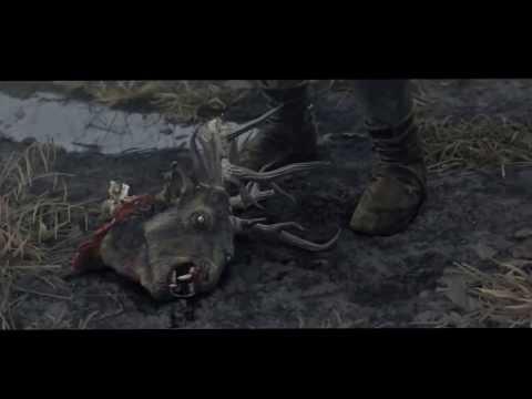 Видео Ведьмак 3 что нужно подарить шани