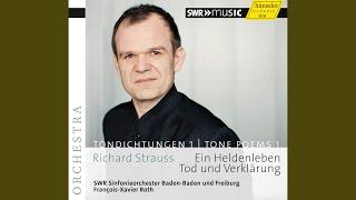 Ein Heldenleben, Op. 40, TrV 190: Des Helden Gefahrtin (The Hero