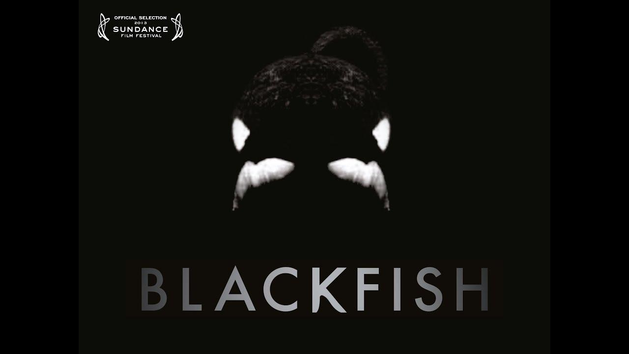 Blackfish - Official Trailer