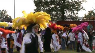 carnaval papalotla tlax en new haven ct