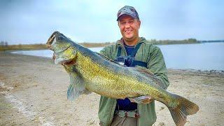 ПОКЛЕВКУ этого ОГРОМОНОГО СУДАКА вы должны УВИДЕТЬ ВЗЯЛ СВОЙ ТРОФЕЙ Моя лучшая рыбалка 2020