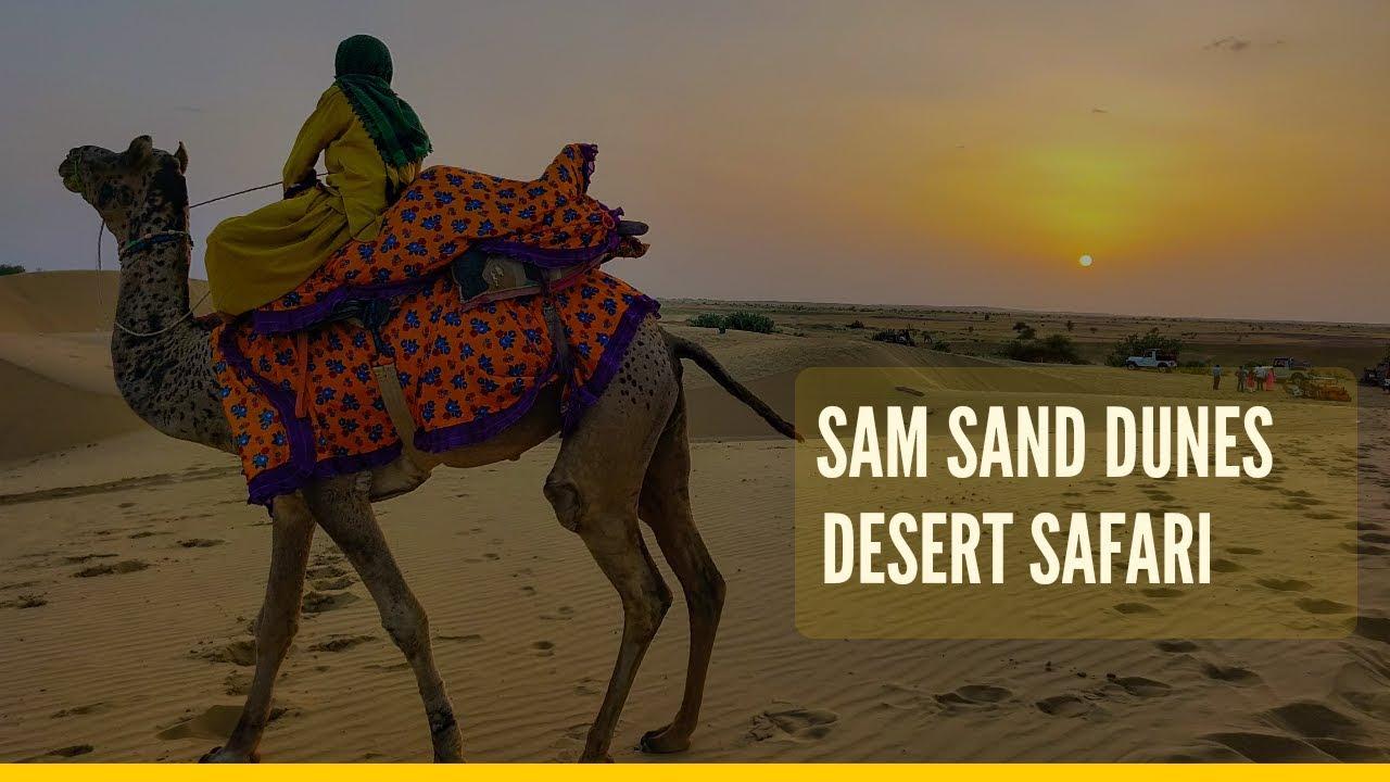 Sam Safari
