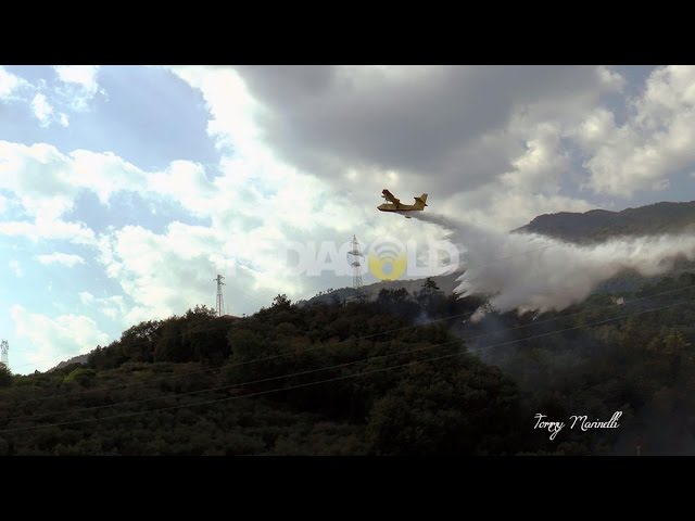 Loano: incendio in zona Morteo probabilmente di origine dolosa: video #1