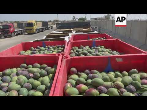 Israel shuts primary cargo crossing point