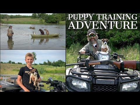 PUPPY TRAINING ADVENTURE | CHOCOLATE LAB, JACK RUSSELL, CATAHOULA LEOPARD DOG