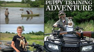 PUPPY TRAINING ADVENTURE | CHOCOLATE LAB, JACK RUSSELL, CATAHOULA LEOPARD DOG