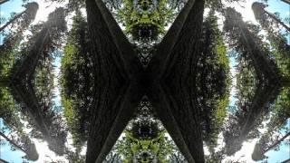 DJ Warlock - Hallucination