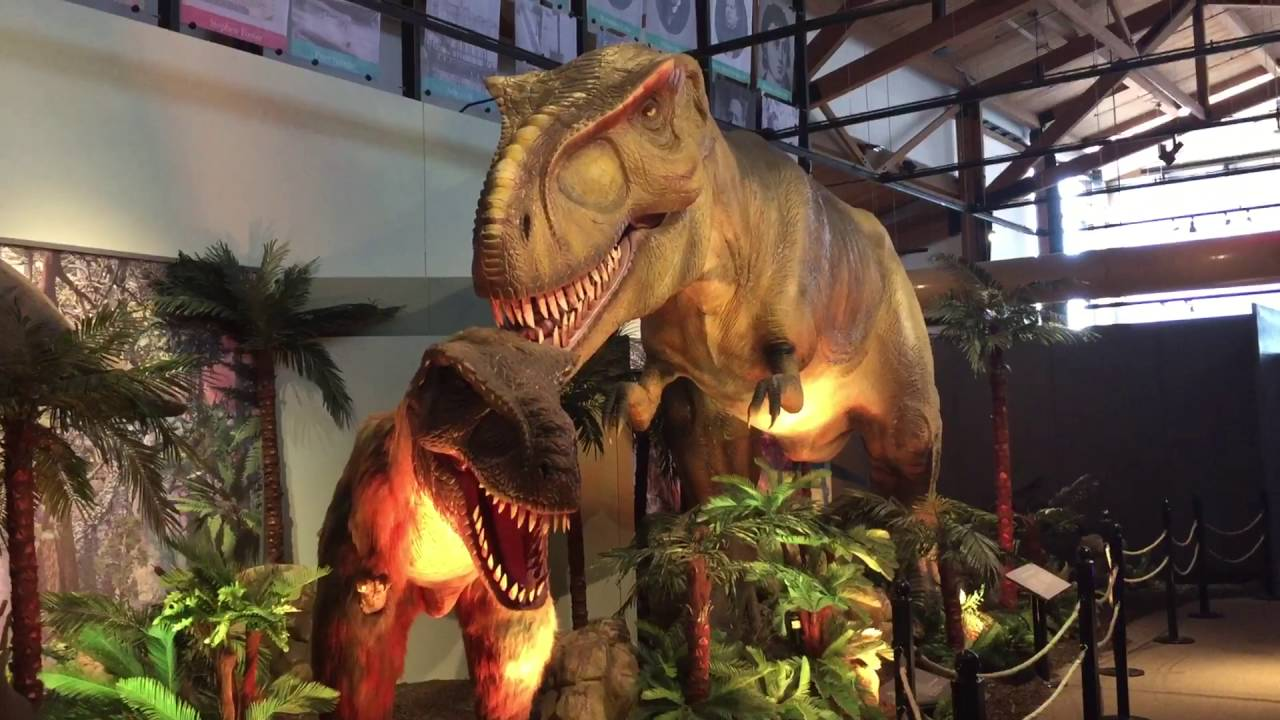 Dinosaur Exhibit At The Dubuque River Museum And Aquarium