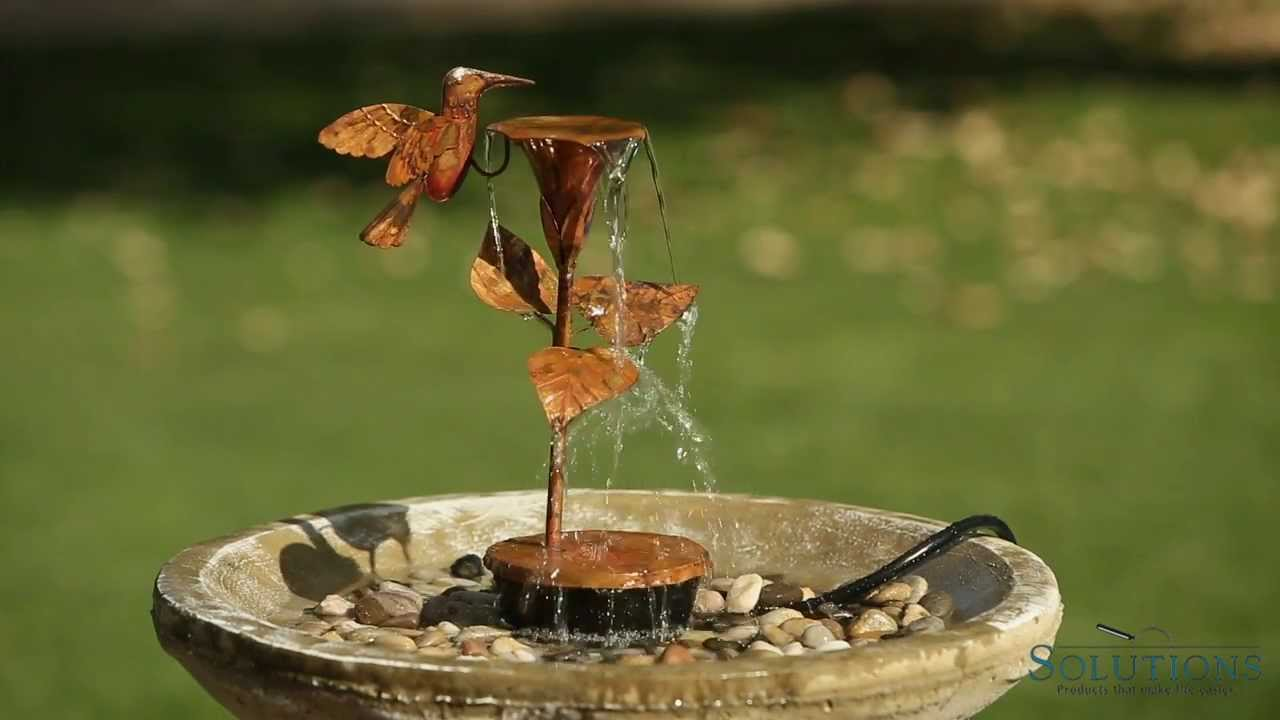 Hummingbird Fountain Solutions Youtube
