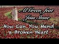 Al Green (feat. Joss Stone)- How Can You Mend a Broken Heart (TRADUÇÃO)