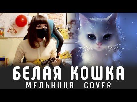 БЕЛАЯ КОШКА (Мельница Cover) - САМАЯ УЮТНАЯ ПЕСНЯ ^_^