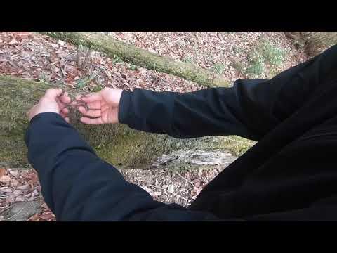 【ロープワーク】トラッカーズヒッチの覚え方