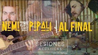nemi pipali al final sesiones acústicas live from apapachoa studios