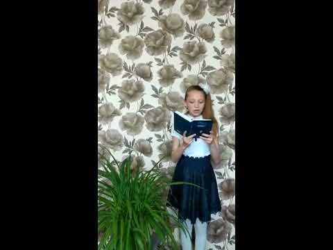 Изображение предпросмотра прочтения – ОльгаПримак читает произведение «Пропавшая грамота» Н.В.Гоголя