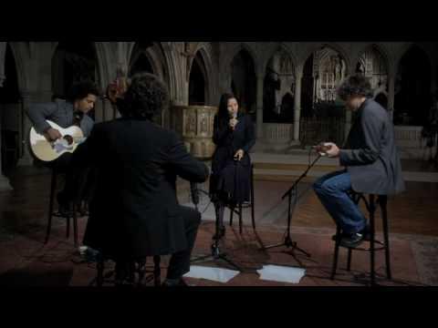 Natalie Merchant - The Man in the Wilderness