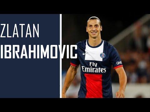 Zlatan Ibrahimovic || Goals & Skills || 2013/2014 || PSG || HD