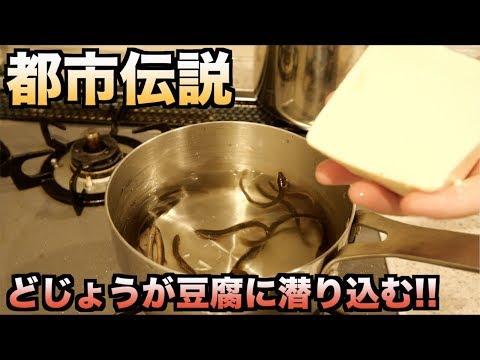 大成功!!生きたどじょうと豆腐を一緒に煮込んだら豆腐に潜り込んだ!!