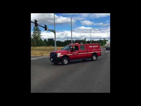 Chickens roam roadway after semi-truck crash in Clark County