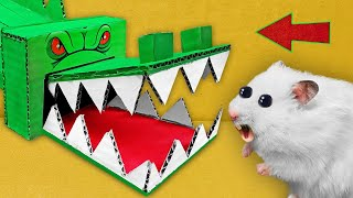 🐊 CROCODILE   - Hamster Maze with Traps 🔥 [OBSTACLE COURSE]