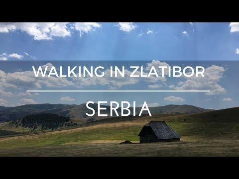 Walking in Zlatibor | Serbia