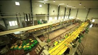 SRINI FOOD PARK - Aspectic  Pulp Processing Unit