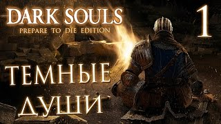прохождение Dark Souls Prepare To Die Edition  Часть 1: ТЕМНЫЕ ДУШИ