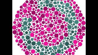 Color blind test as a color blind people see