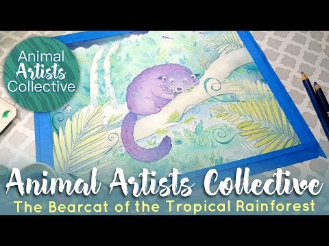 The Bearcat of the Tropical Rainforest //Animal Artist Collective