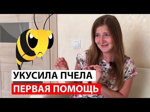 Первая помощь при укусе осы или пчелы