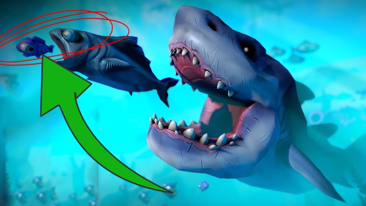 el pez grande siempre se come al peque o feed and grow