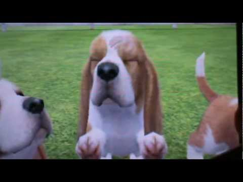 nintendogs + cats special race les basset hound - YouTube