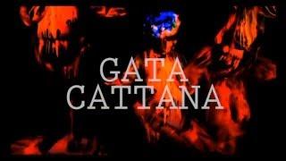 GATA CATTANA - SAMSARA (Prod NICO MISERY)