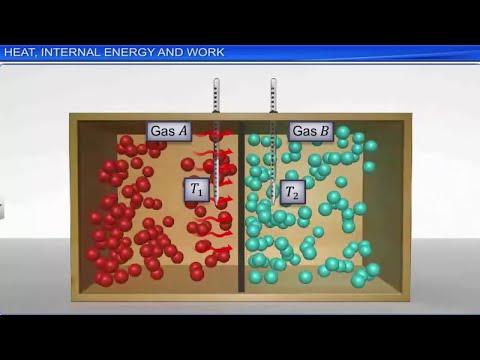CBSE Class 11 || Thermodynamics || Full Chapter || by Shiksha House thumbnail