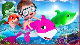 Banana Cartoon 3D Nursery Rhymes Baby & Kids Songs live stream on Youtube.com