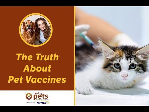 The Truth About Pet Vaccines