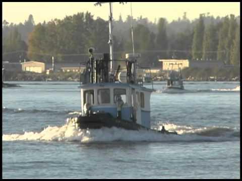 TUGBOATS fraser river 2001 footage