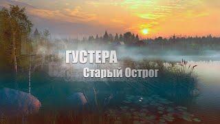 Русская Рыбалка 4 Russian Fishing 4 Озеро Старый Острог Густера