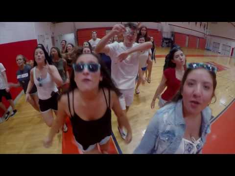 Manalapan High School Lib Dub 2017