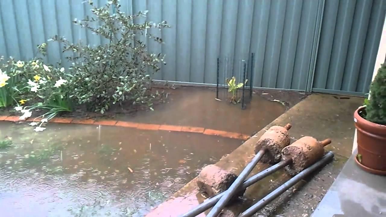 Backyard flooding with ducks - YouTube
