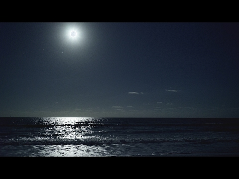 ASMR - (4K) Relaxing Night at the Beach