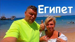 Египет 2020 Что мы нашли на пляже в Хургаде Египет сегодня Хургада 2020 Отель Bella Vista 4