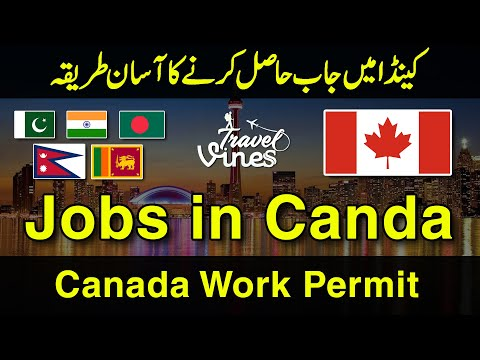How To A Get Jobs In Canada | Yukon Nominee Program | Canada Work Permit | Travel Viness