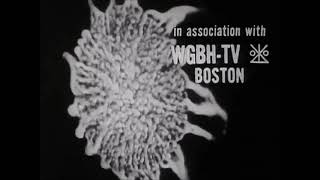 WGBH In-Credits Compilation (Early 1960s - Mid 1960s)
