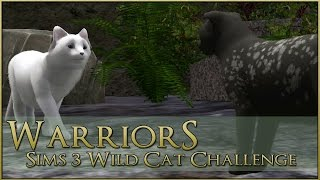 Shadowed Promises of Powerful Kits || Warrior Cats Sims 3 Legacy - Episode #32