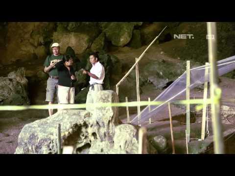 Indonesia Bagus - Kisah Penemuan Fosil Homo Floresiensis di Manggarai, Flores