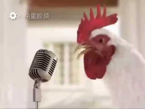 Как куры поют )) Прикольное видео-поздравление: С Новым годом - 2017 - год Петуха!!!