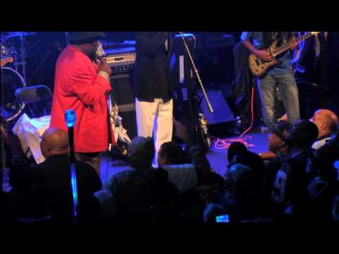 George Clinton and the P-Funk Allstars