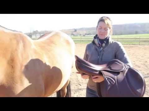 Robin Moore & Amerigo Saddle Fitting - Part 2/2