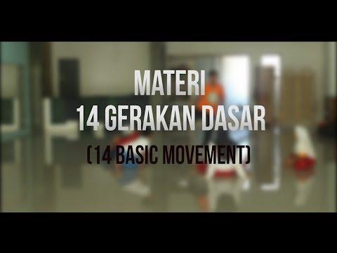 14 GERAKAN DASAR (14 BASIC MOVEMENT) TAEKWONDO